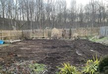 vegetable garden resolution